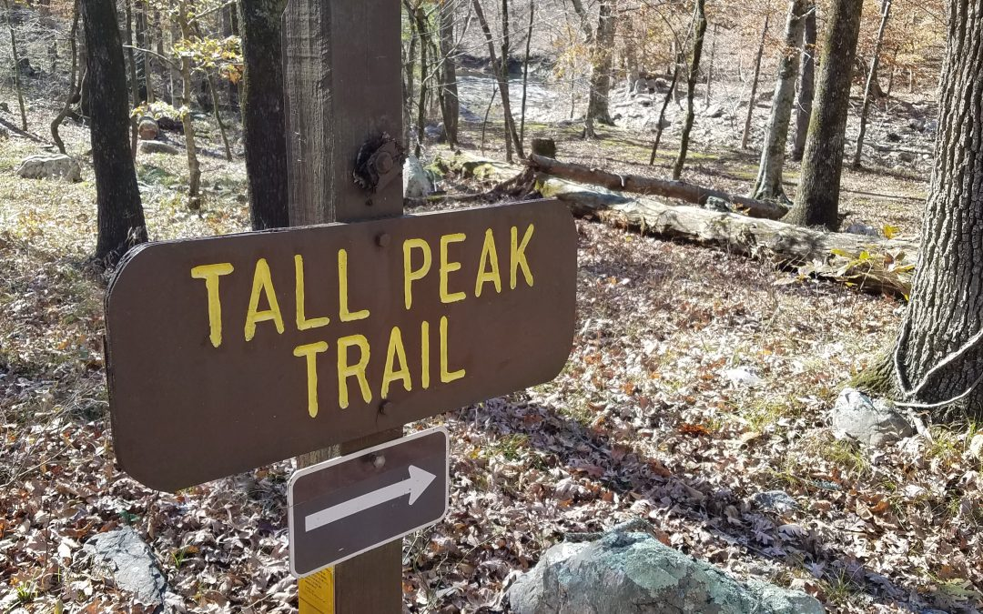 Tall In Fall Part II: We're Not Lost. We're Just Off the Trail.